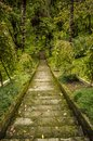 Stairs going down Royalty Free Stock Photo