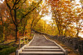 Stairs going uphill in autumn