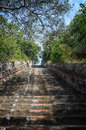 Stairs leading to the temple lord bhaktha vatsaleswarar india Royalty Free Stock Images