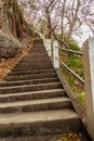 The stairs leading up the temple on the mountain