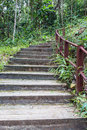 Stairs, Through The Nature Tra...