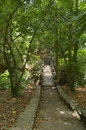 Stairs to the natural Royalty Free Stock Photo