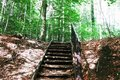 the stairs to the top, into the woods Royalty Free Stock Photo