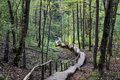 Stairs to unknown sigulda latvia in the forest nature view Stock Image