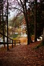 Stairs in the woods near lake during autumn season foliage no people trentino lake cei