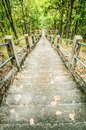 Stairway in the jungle at thailand Stock Images