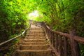 Stairway to forest, Kanchanburi,Thailand Royalty Free Stock Photo
