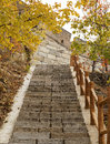 Stairway to Great Wall during Autumn Royalty Free Stock Photos