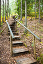 Stairway to mountains forest, nature trail in reserve Royalty Free Stock Photo