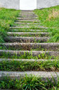Stairway to nowhere stone stairs covered in grass leading upwards an opening Royalty Free Stock Photo