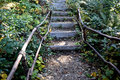 Stairway to tourists in a mountain forest Royalty Free Stock Photo