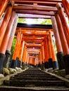 Stairway through tori gates at fushimi inari shrine leaing up the in kyoto japan Stock Image
