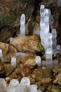 Stalactite Stock Photography