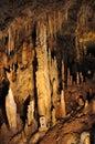 Stalactites in gyokusendo cave cm per years okinawa world japan Royalty Free Stock Photography