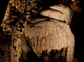 Stalagmites and flowstone in a cave limestone drapery the caves of han sur less belgium Royalty Free Stock Images