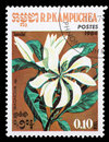 Stamp printed in the Cambodia, depicts a flower Magnolia Royalty Free Stock Photo
