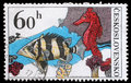 Stamp printed in Czechoslovakia, shows Datrioides Microlepis and Sea Horse Royalty Free Stock Photo