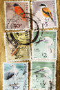 Stamps printed in Hong Kong Royalty Free Stock Photo