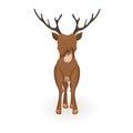 Stand cartoon reindeer