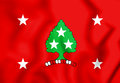 Standard of the Governor of Tennessee, USA.