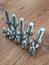 Standing bolt upright Royalty Free Stock Photo