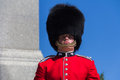 Standing ceremonial guard guarding ottawa ontario canada Royalty Free Stock Images