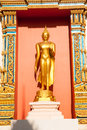 Standing golden buddha is in front of ubosot in wat lummahachaichumpol rayong thailand Royalty Free Stock Photo