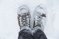 Standing in snow Royalty Free Stock Photo