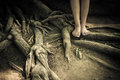 Standing on a tree root girl Stock Photography
