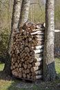 Stapel des Brennholzes Stockfoto