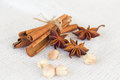 Star anise 'cinnamon sticks 'cardamon seeds Royalty Free Stock Photo