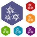 Star anise icons set hexagon