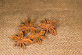 Star anise on a very old cloth few Royalty Free Stock Images