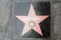 The star of buddy holly on walk fame on hollywood blvd los angeles california Royalty Free Stock Images