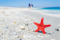 Star fish on the sand Royalty Free Stock Photo