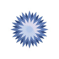 star flower spring icon Royalty Free Stock Photo