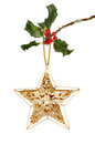 Star and holly gold glitter jeweled christmas hanging fron a branch isolated against white Stock Photo