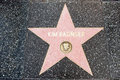 The star of kim besinger on walk fame on hollywood blvd los angeles california Stock Photos