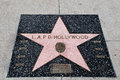 The star of l a p d los angeles police department on walk fame on hollywood blvd los angeles california Stock Image