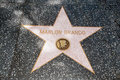 The star of marlon brando on walk fame on hollywood blvd los angeles california Stock Photo