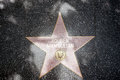 The star of rouben mamoulian on walk fame on hollywood blvd los angeles california Royalty Free Stock Photography
