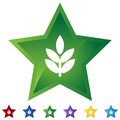 Star Set - Plant Royalty Free Stock Images