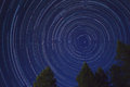 Star Trails With Trees