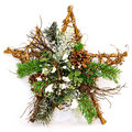 Star tree decor Royalty Free Stock Image