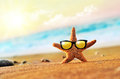 Starfish Royalty Free Stock Photo