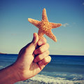 Starfish on the beach picture of someone holding a with ocean in background with a retro effect Royalty Free Stock Photography
