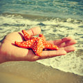 Starfish on the beach picture of someone holding a papier mache with ocean in background with a retro effect Royalty Free Stock Photography