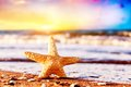 Title: Starfish on the beach at warm sunset. Travel, vacation, holidays