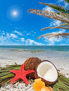 Starfish coconuts and palm under a tree Stock Photography