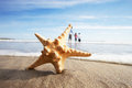 Starfish in foreground as father plays with children in sea background Stock Photography